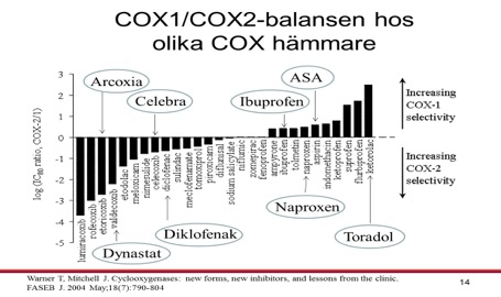 COX_hämmare.jpg