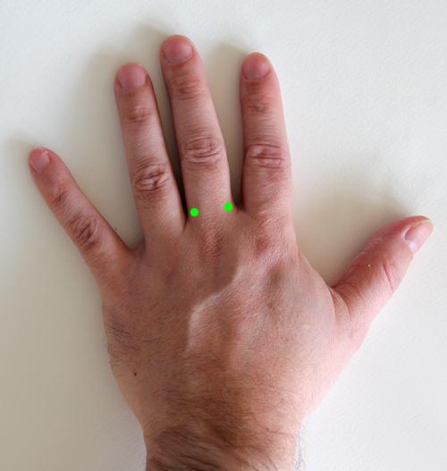Fingerbasblockad