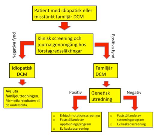 Utredningsgång vid misstänkt heriditär dilaterad kardiomyopati