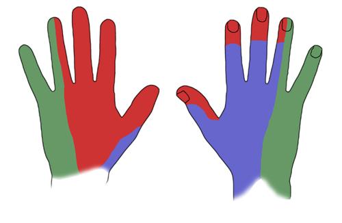 Handens innervation