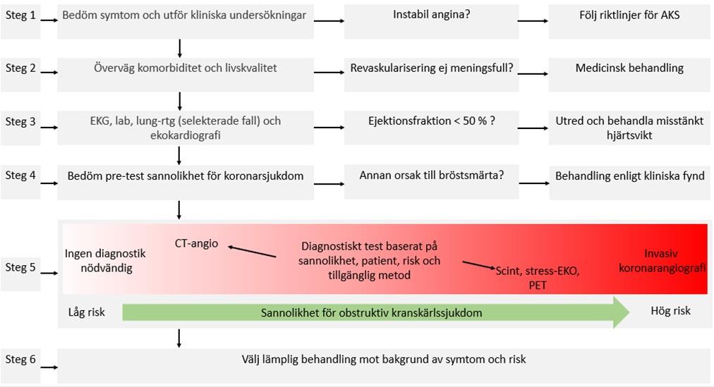Angina_pectoris_kroniskt_koronart_syndrom1.jpg